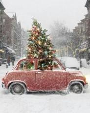 amsterdam-car-christmas-fiat-Favim.com-2199523