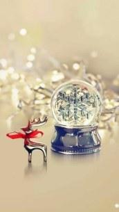 background-christmas-colors-cute-Favim.com-2317615