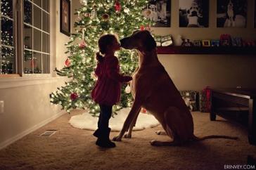 christmas-dog-kiss-lights-Favim.com-1615350